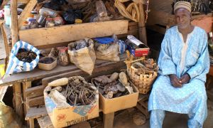 Venditore di tuberi a Foumban
