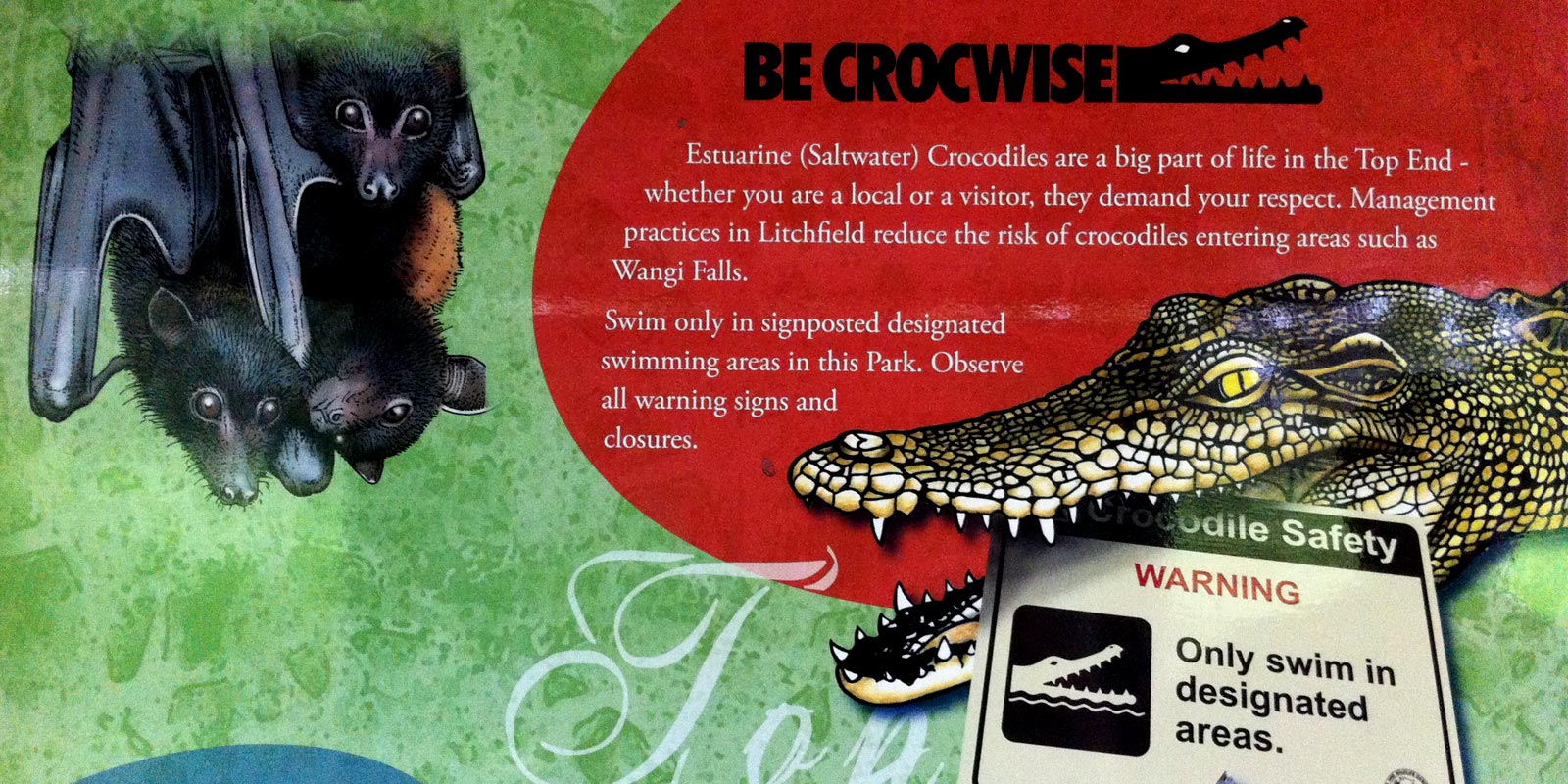 Be crocwise! Un tuffo nelle Buley Rockholes in mezzo… ai coccodrilli