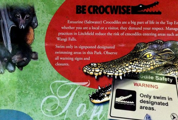 becrocwise-800