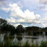 Giù al Nord, alla scoperta delle Wetlands nel Top End australiano