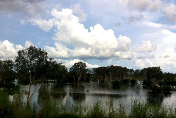 wetlands-800-2